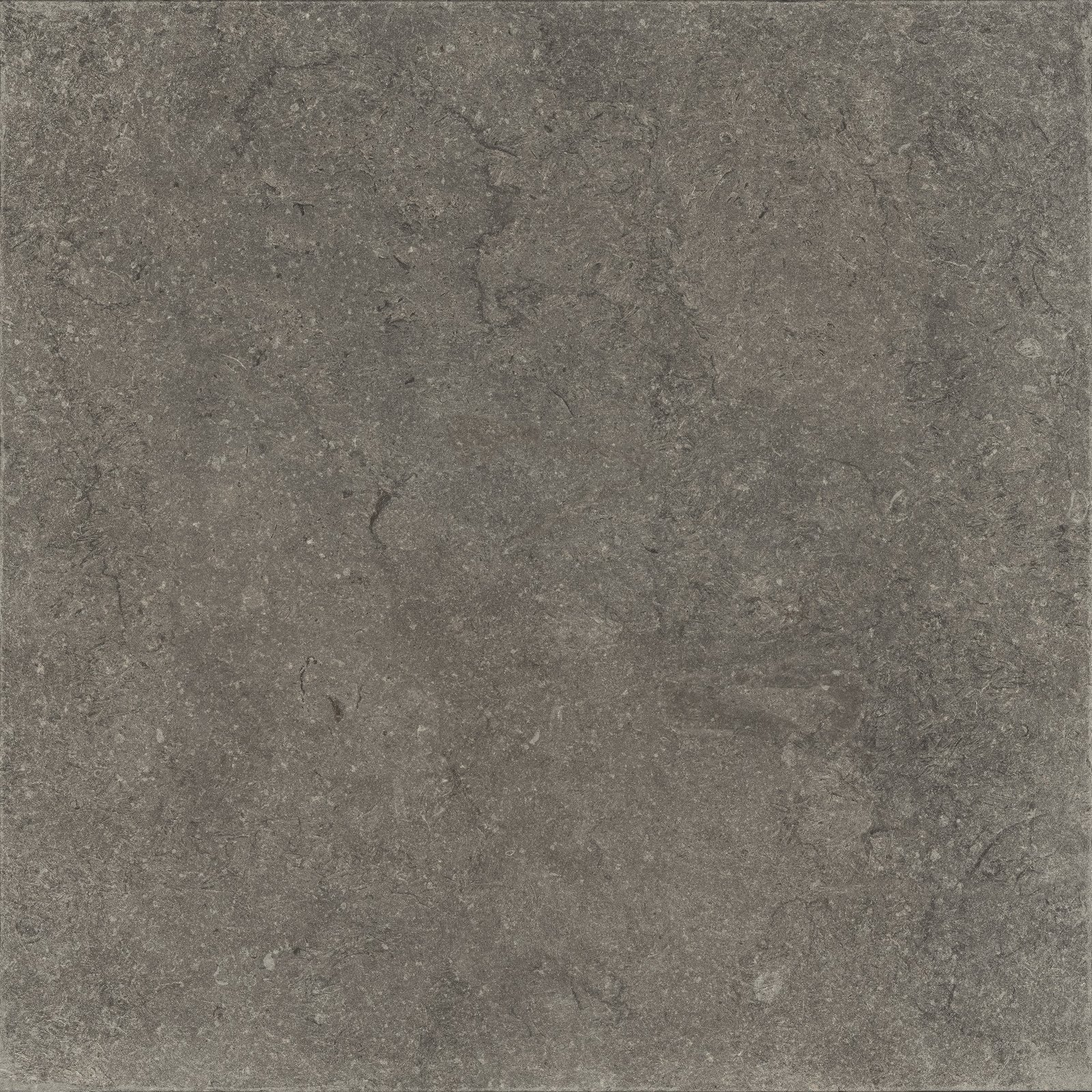 BLACK (X60NF9R) изображение 4