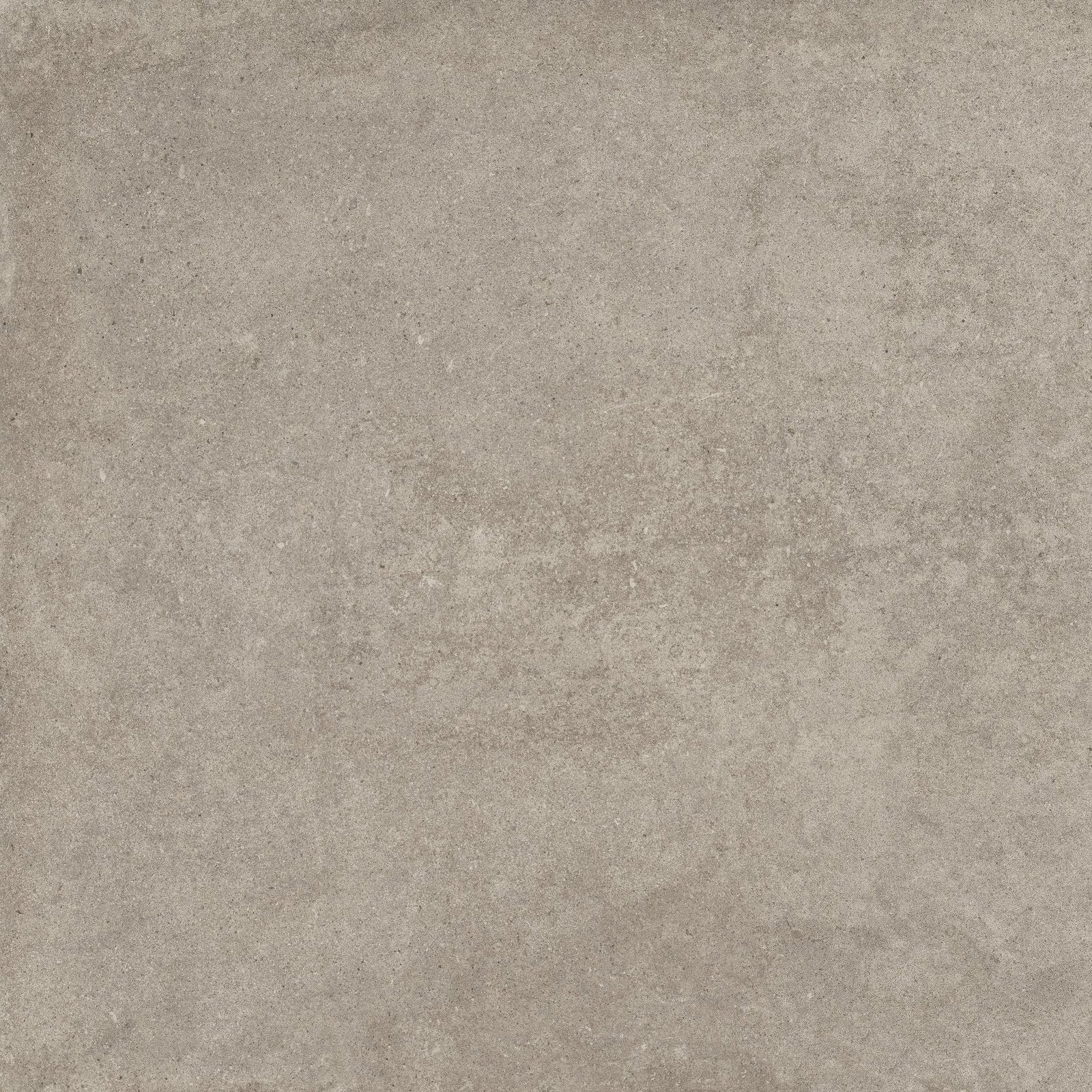 GREY (X60RM8R) изображение 2