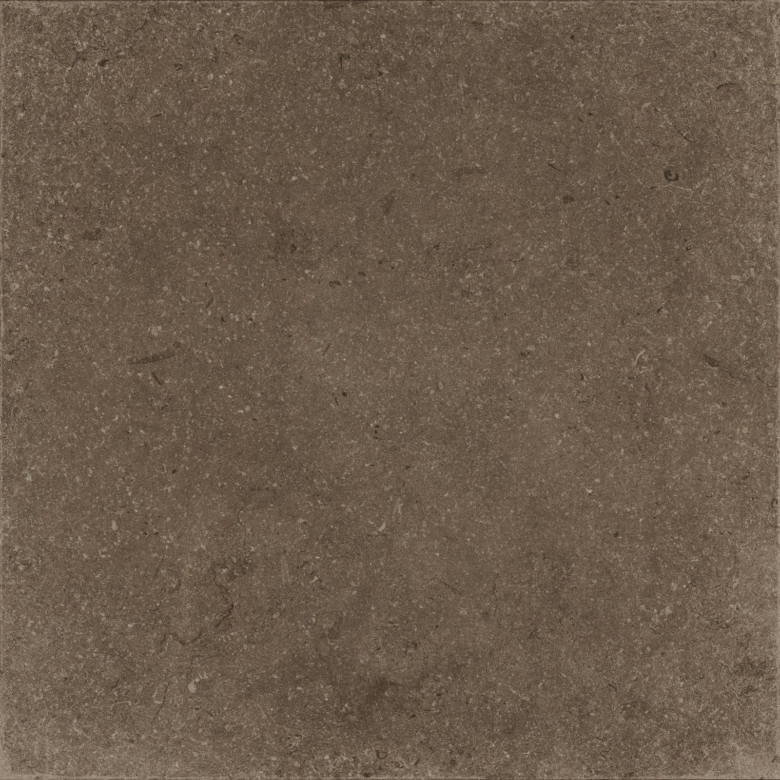BROWN (X60NF6R) изображение 1