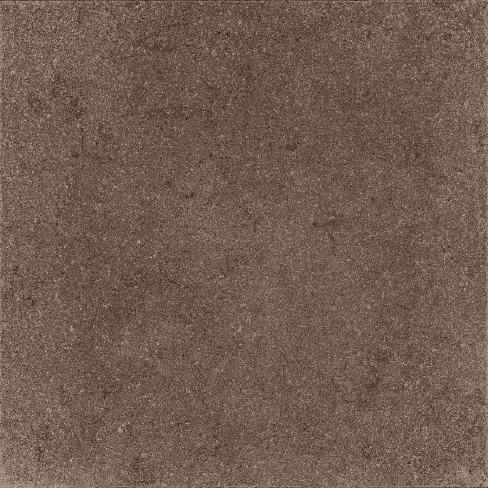 BROWN (X60NF6R) изображение 2
