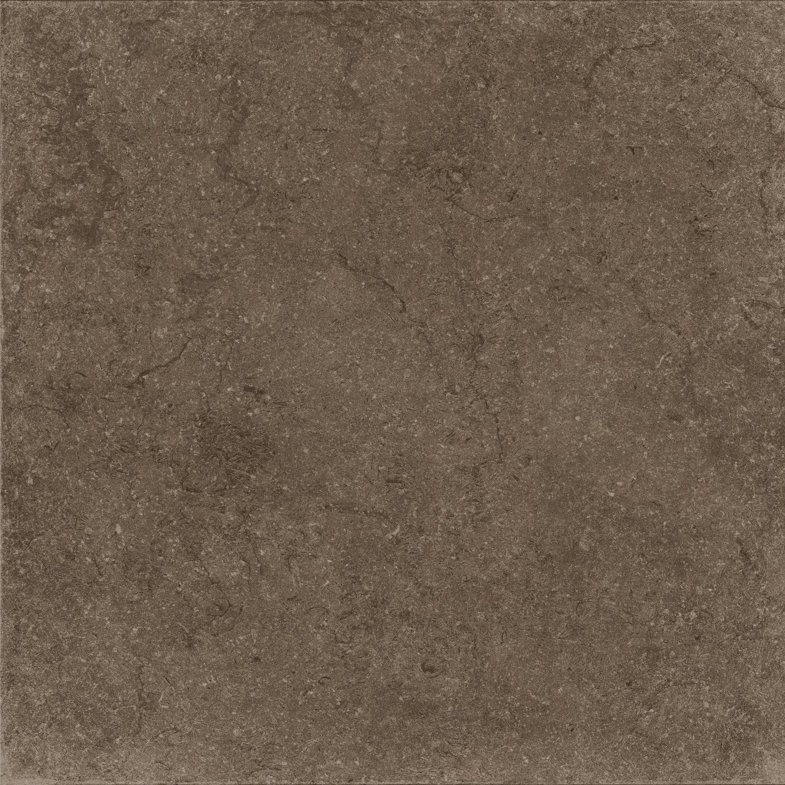 BROWN (X60NF6R) изображение 4