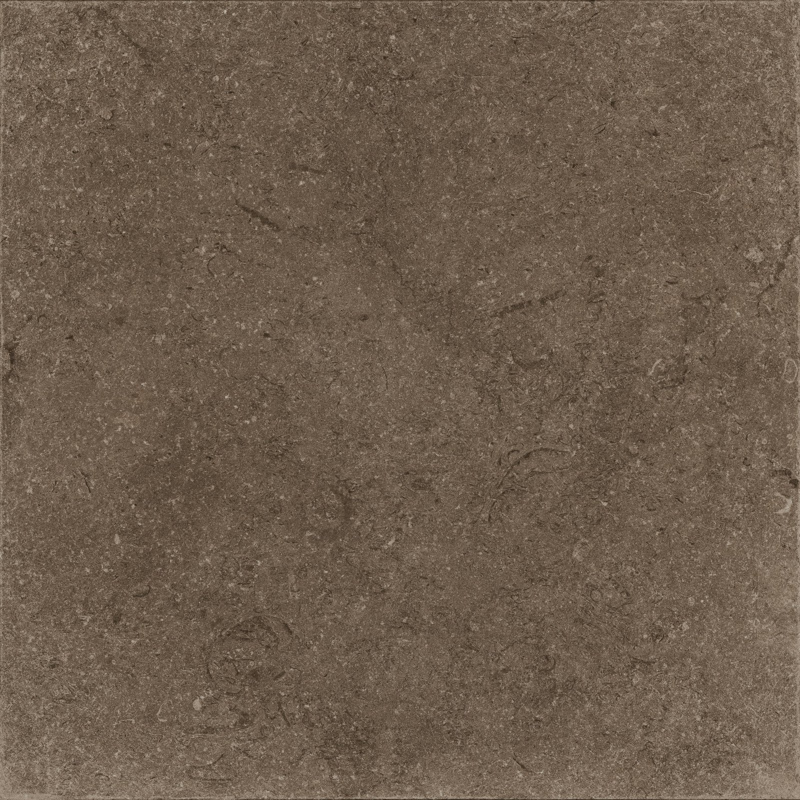 BROWN (X60NF6R) изображение 0